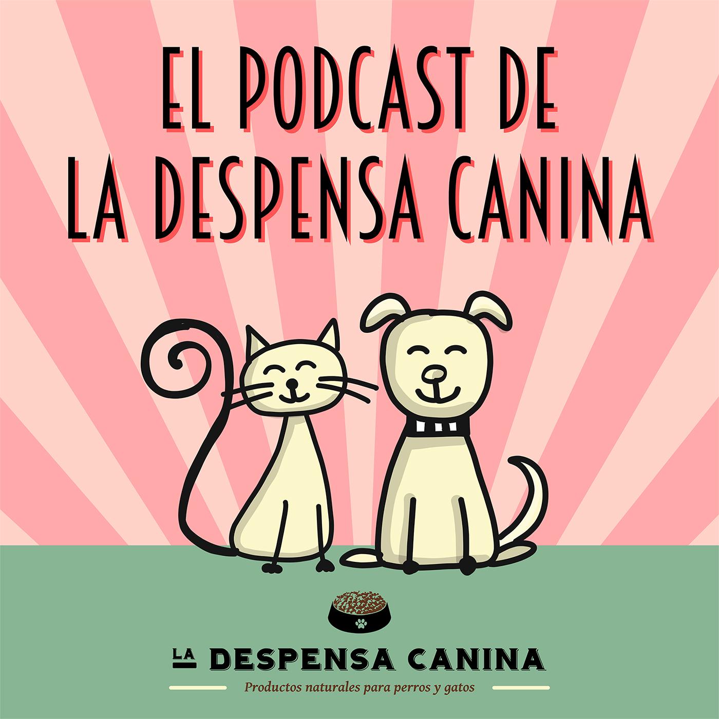 El Podcast de La Despensa Canina